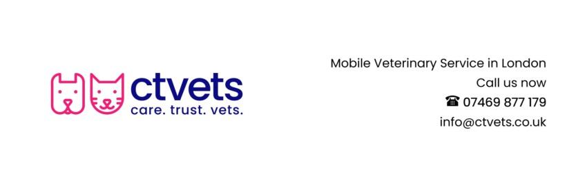 home visit mobile veterinary service